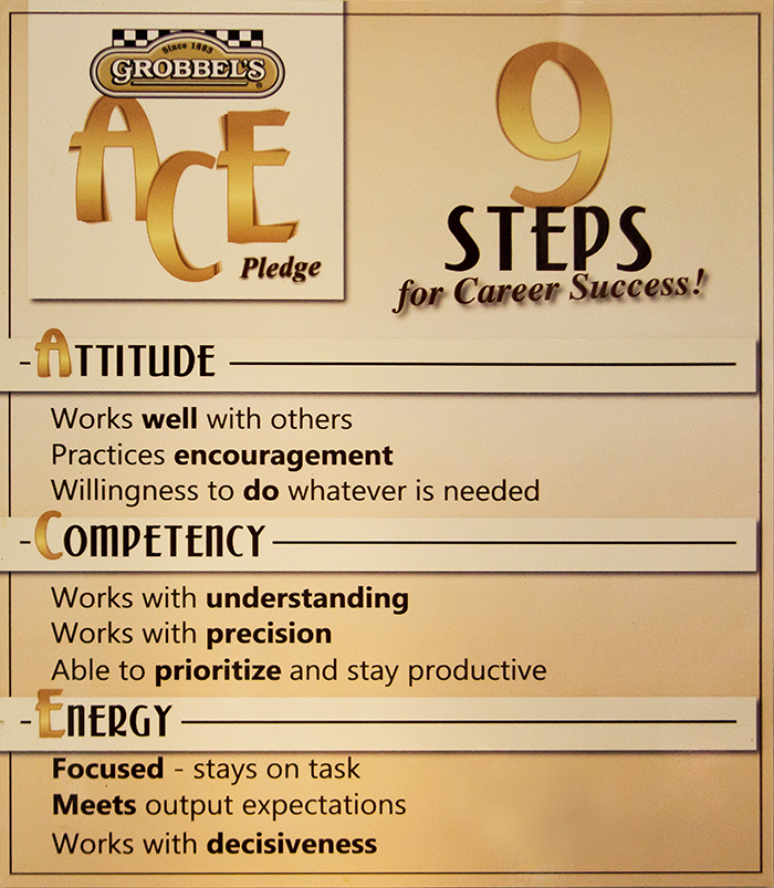 Poster of Grobbel's steps for success ACE